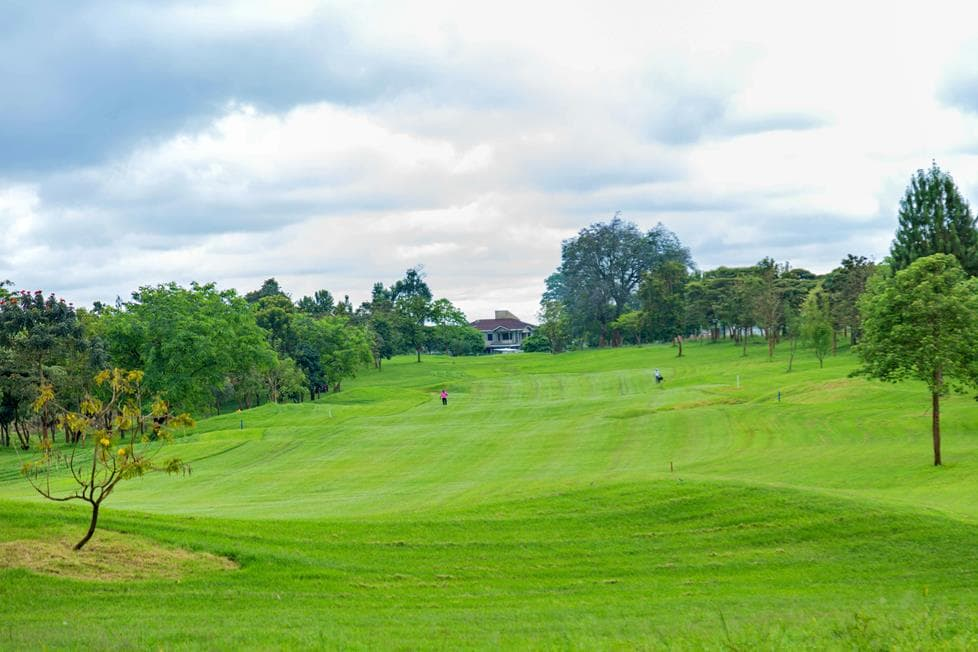 Migaa Golf Course Construction Feb 2021 Updates